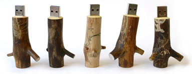 Wooden_memory_stick_oooms