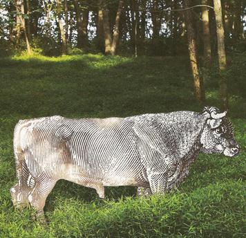 Woodblock_print_cow_o_at_home_sprin